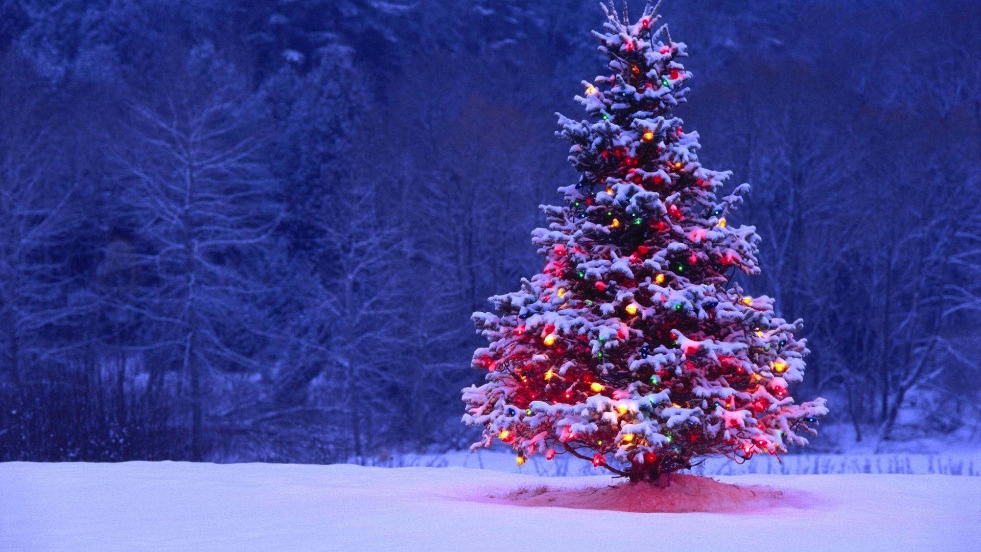 Christmas Songs For Those Needing To Be Merry | One Music PH
